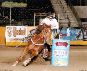 how to train a barrel horse video