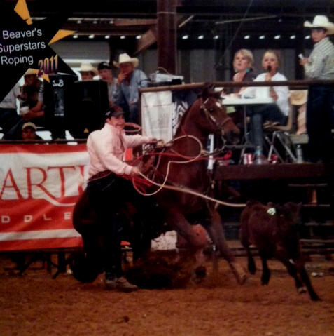 Calf Roping Horses for Sale
